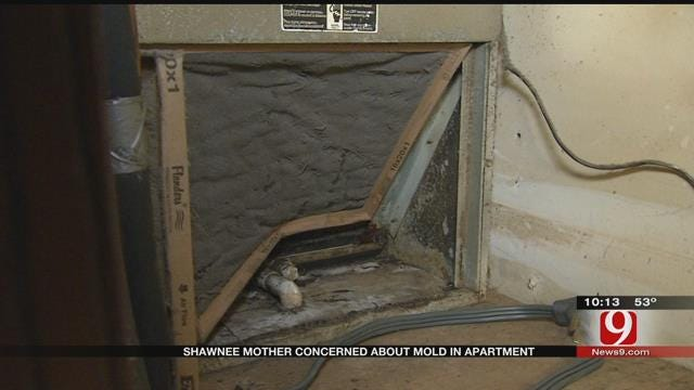 Shawnee Apartment Residents Say Mold Is Making Them Sick