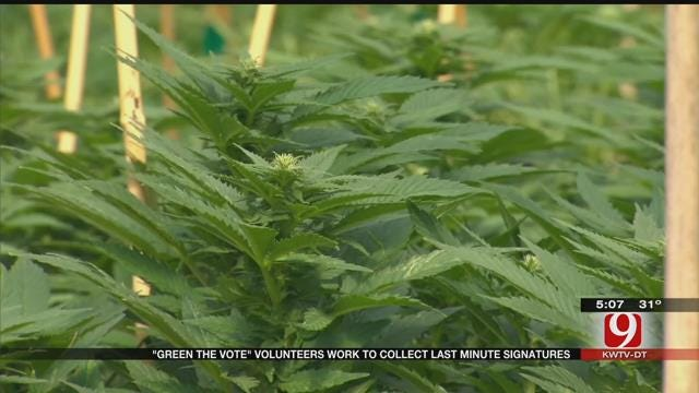 'Green The Vote' Volunteers Work To Collect Last Minute Signatures