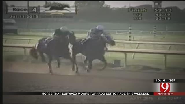 Horse That Survived Moore Tornado Set To Race This Weekend