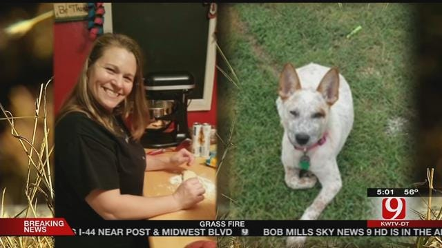 Dog Reunites With Family After Deadly Crash