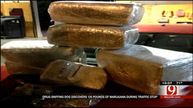 Drug Sniffing Dog Discovers 125 Pounds Of Marijuana During Traffic Stop