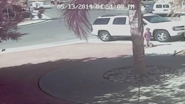WEB EXTRA: California Family Cat Saves Boy From Dog Attack
