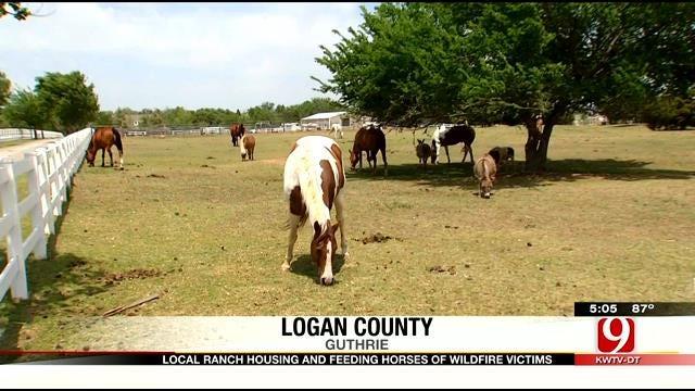 Oklahoma Ranch Housing, Feeding Horses Of Wildfire Victims