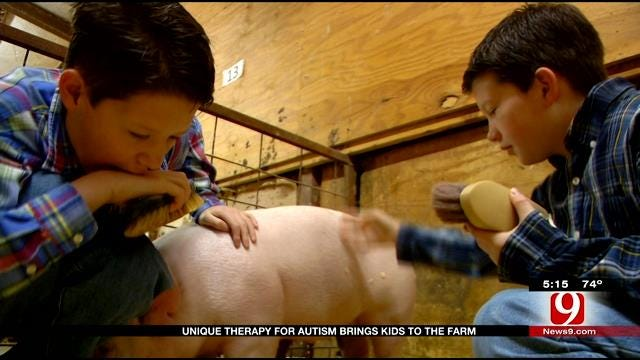 Unique Therapy For Autism Brings Kids To The Farm