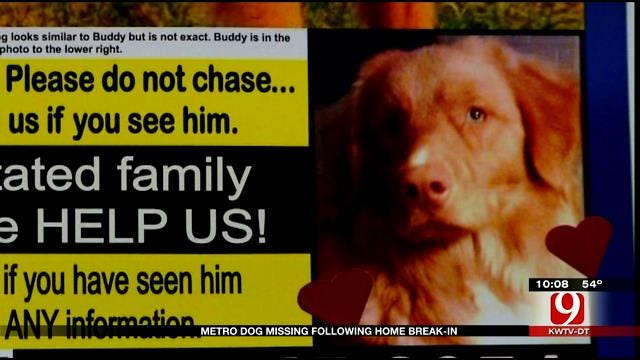 OKC Man Searches For Lost Dog After Home Is Burglarized