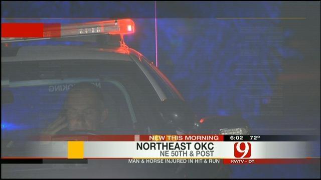 Man, Horse Injured In OKC Hit-And-Run