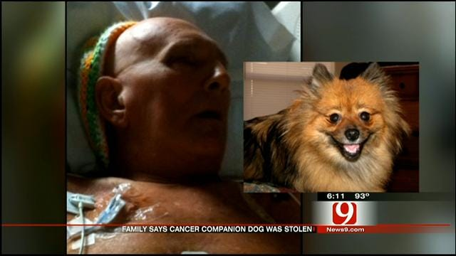 Dog Who Helped Man Fight Cancer Stolen From OKC Home