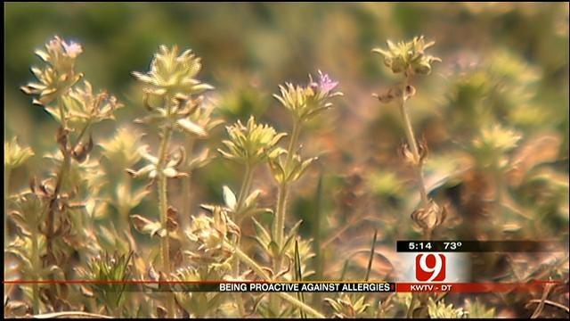 Oklahoma In The Grips Of Allergy Season