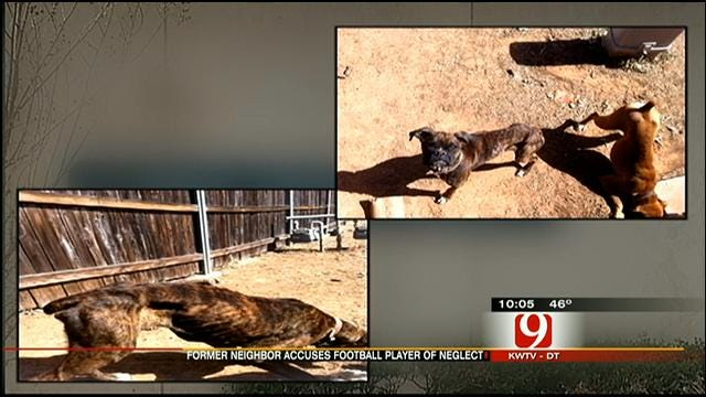 OSU Football Player Accused Of Neglecting Dogs