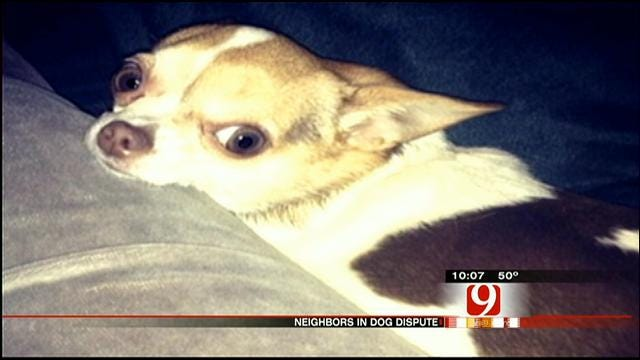 OKC Woman Says Neighbor Gave Her Dog To Friend, Asks For Police's Help