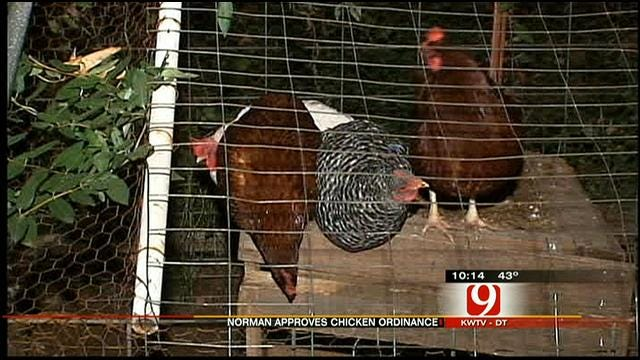 Norman 'Goes To The Birds' With Passing Of New Ordinance