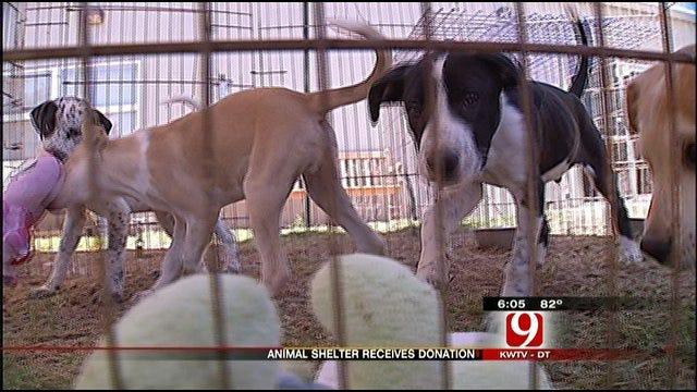 OKC PetSmart Involved In Dog Abuse Makes Donation To Yukon Animal Shelter