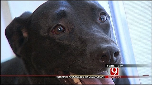 OKC PetSmart Admits Wrongdoing In Apparent Dog Abuse
