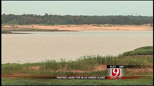 Blue-Green Algae Found At Two Oklahoma City Lakes