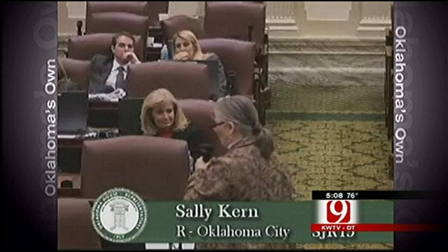 Rep. Sally Kern 'Humbly Apologizes' For Comments About Minorities, Women