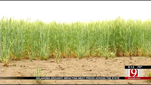Oklahoma Drought Impacting Meat Prices Across The State