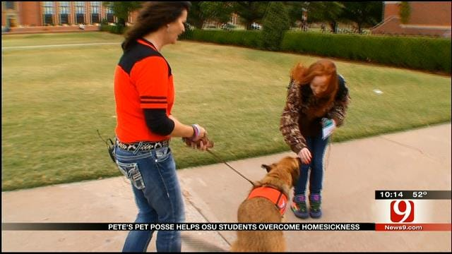 OSU Welcomes Two New Furry Friends To 'Pete's Pet Posse'