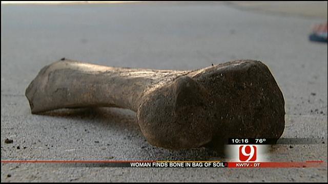 Yukon Police Investigate Mystery Bone Found In Bag Of Soil
