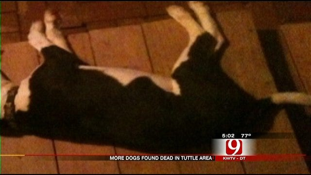 Residents Say More Dogs Being Poisoned In Tuttle Neighborhood