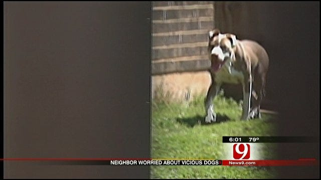 Family Concerned Over Pit Bull Attacks In SW OKC Neighborhood