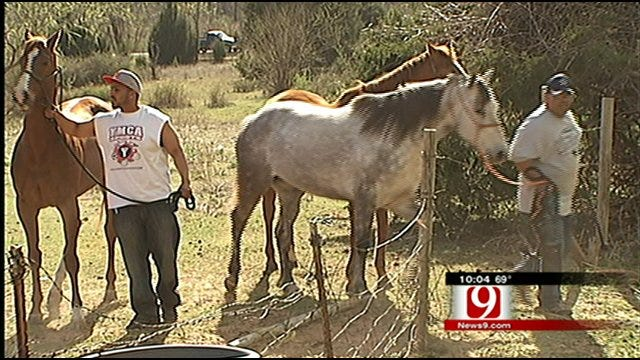 Family Works To Save Livestock, Home From Fire