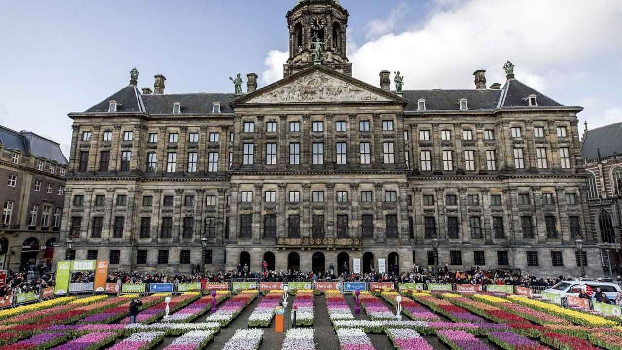 WATCH: Vibrant Tulips Cover The Streets Of Amsterdam On National Tulip Day