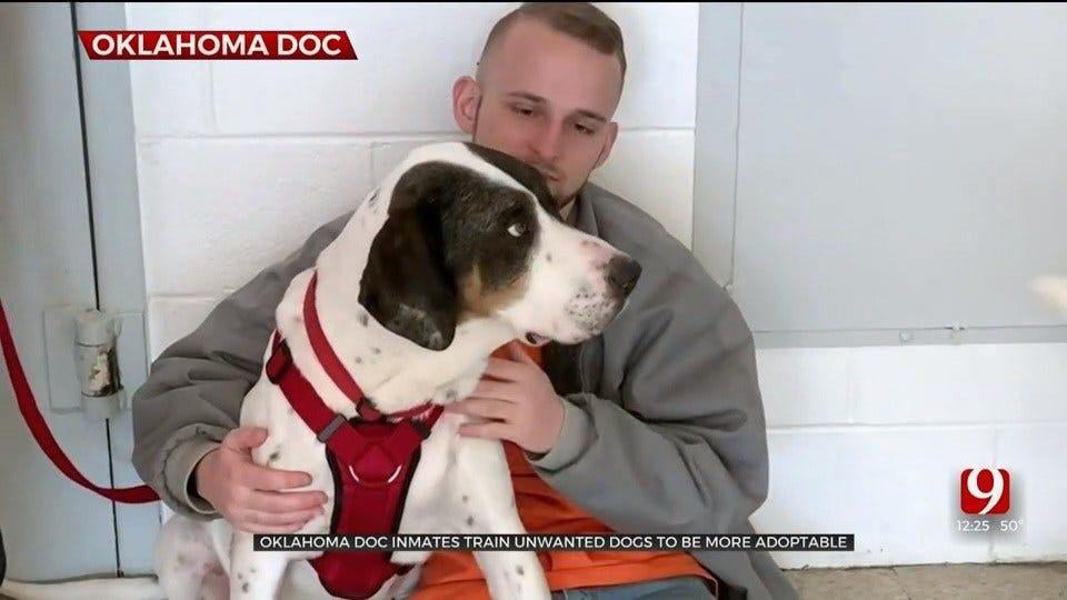 Oklahoma DOC Inmates Train, Rehabilitate Dogs To Become More Adoptable