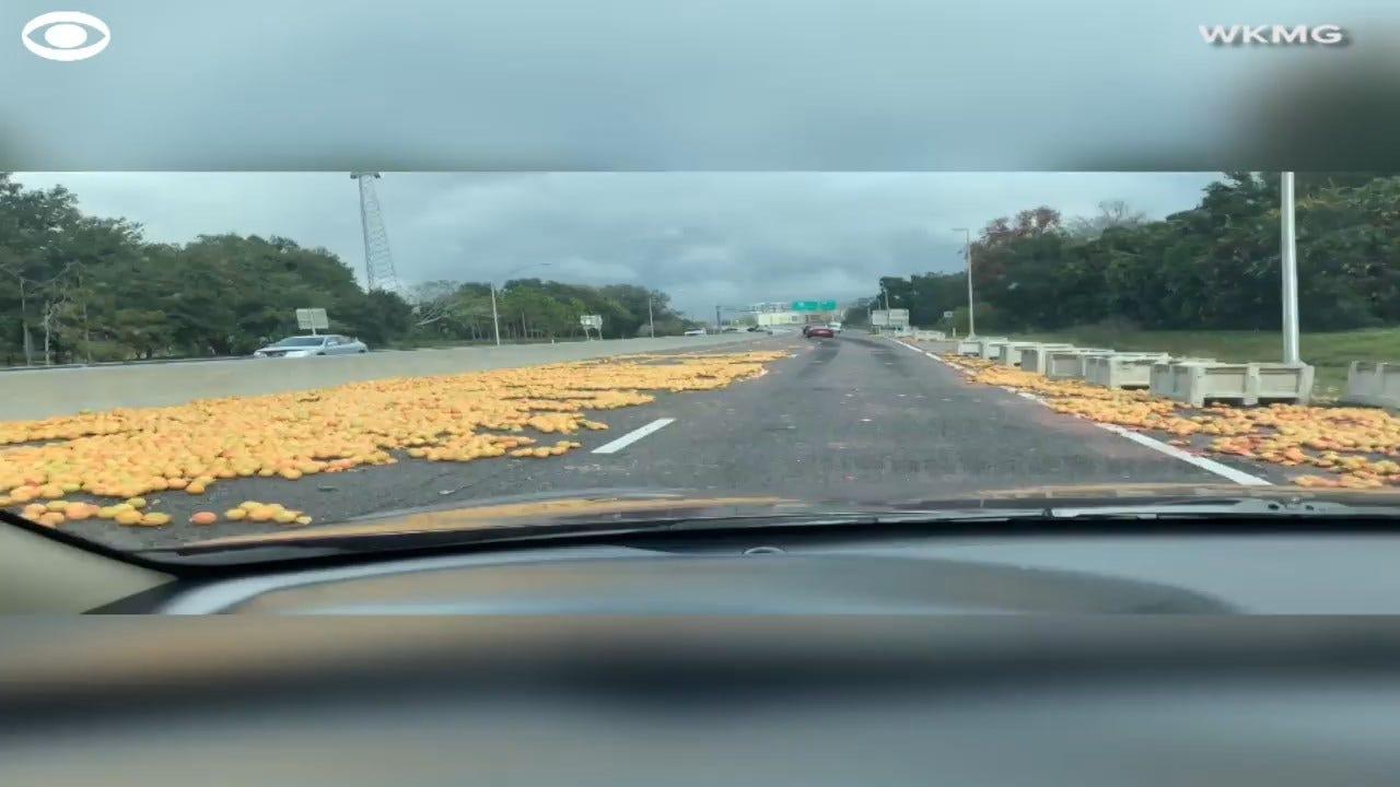 Grapefruit Cleanup On Florida Highway
