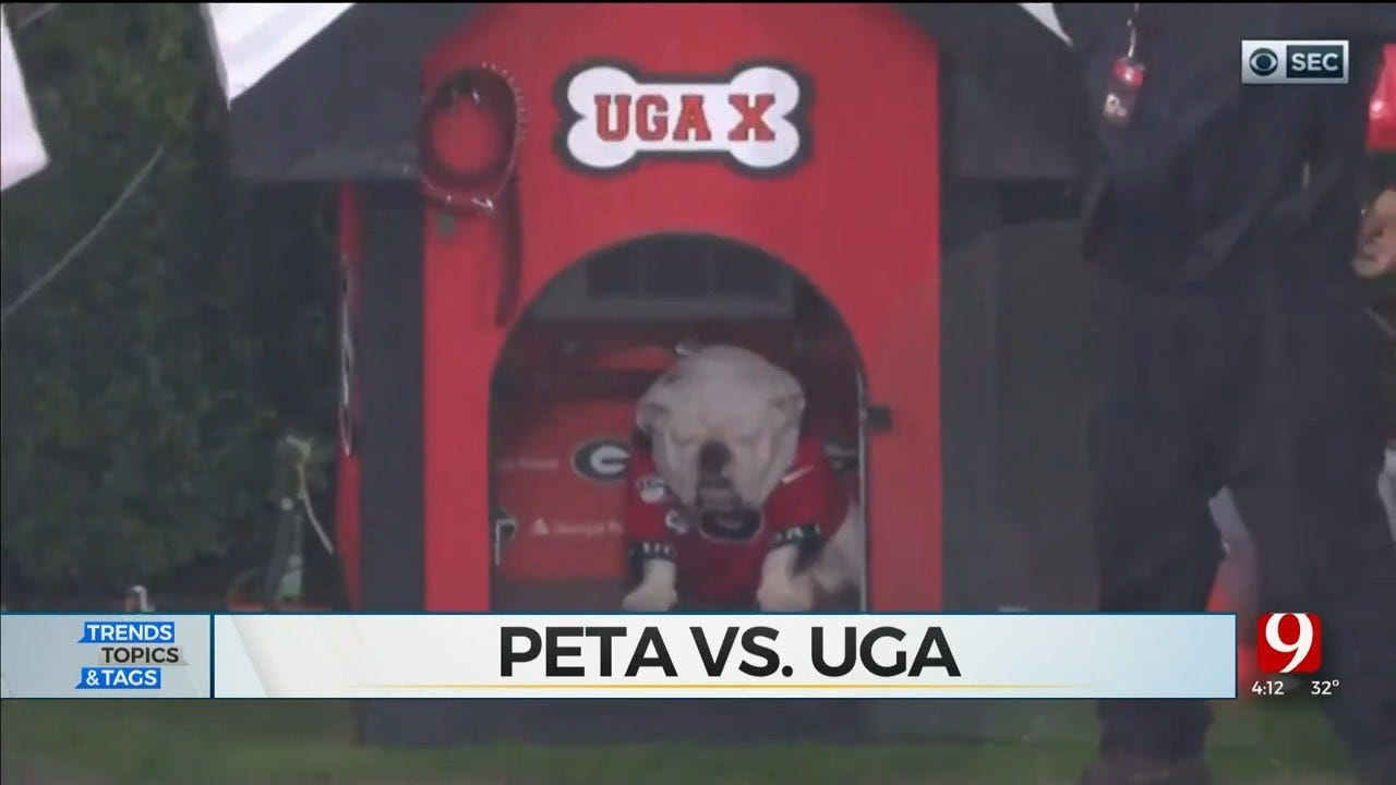 Trends, Topics & Tags: PETA Goes After Uga