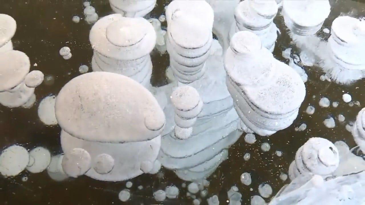 LOOK: Temperatures Drop, Produce Frozen Methane Bubbles In Lake