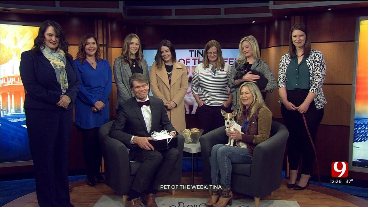 Oklahoma Humane Society Workers Surprise Alex Cameron
