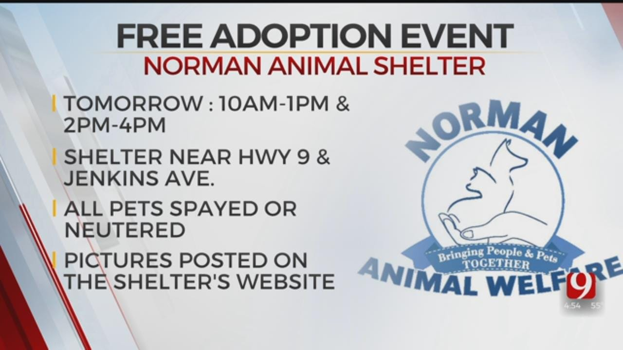 Norman Animal Welfare Hosts Free Adoption Event Saturday