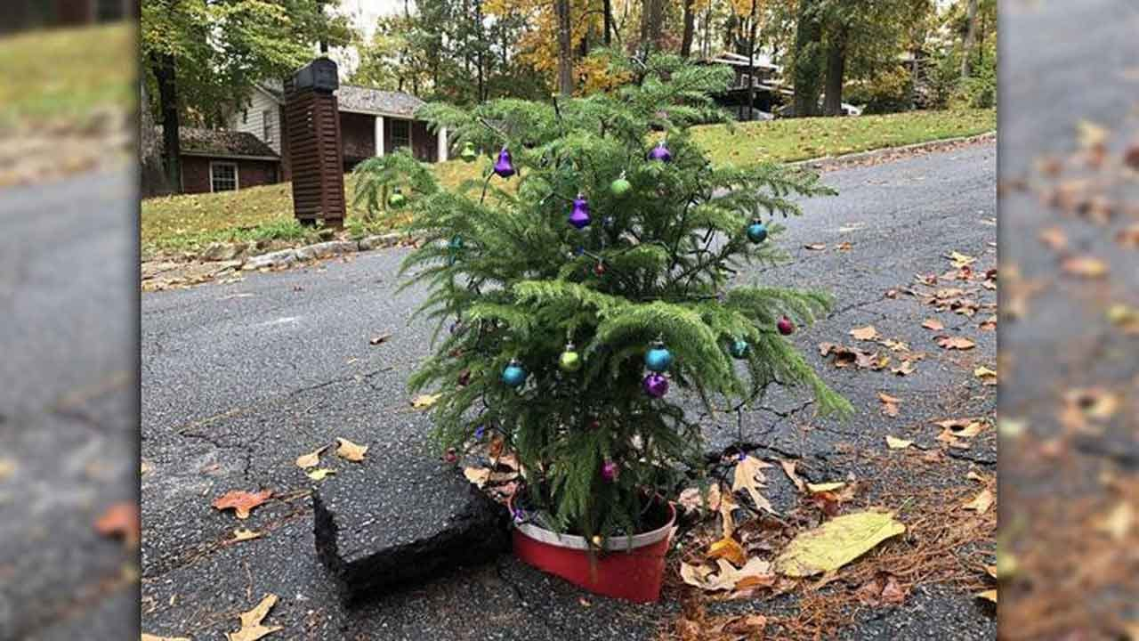 Homeowners Put Christmas Tree In Pothole, Sing Carols To Get City's Attention