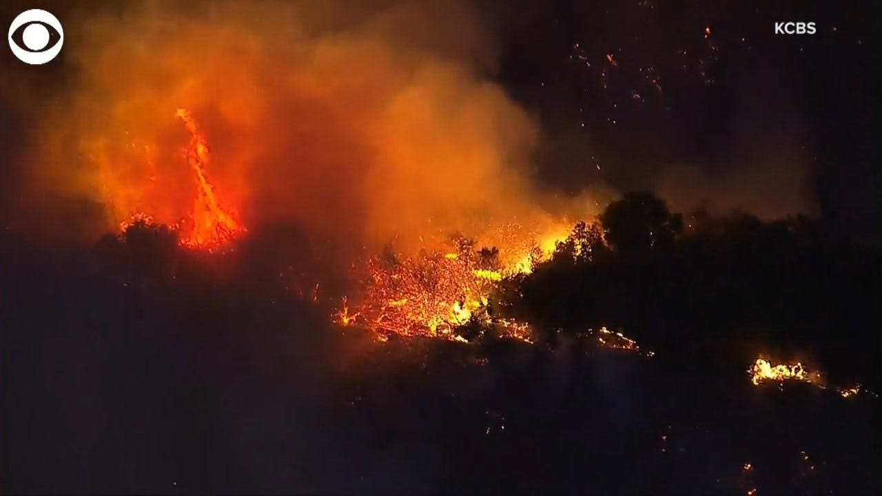 WATCH: Fast-Moving Fire Travels Along The 405 In LA