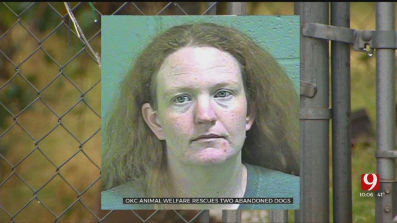 Woman Wanted For Animal Cruelty After Abandoning Dogs In OKC Home
