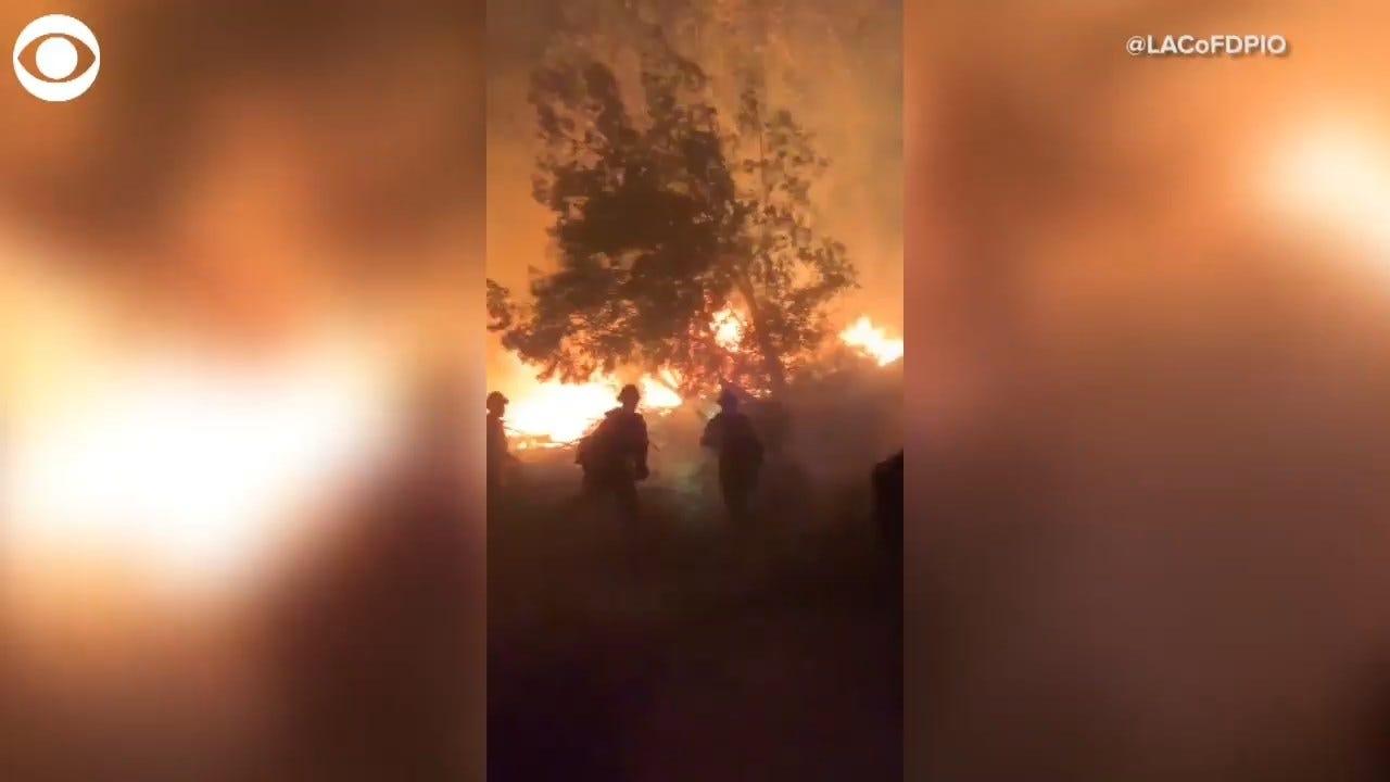 WATCH: Firefighters Battle Saddleridge Fire