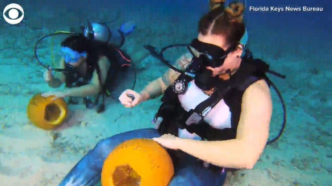 WATCH: Underwater Pumpkin Carving Contest