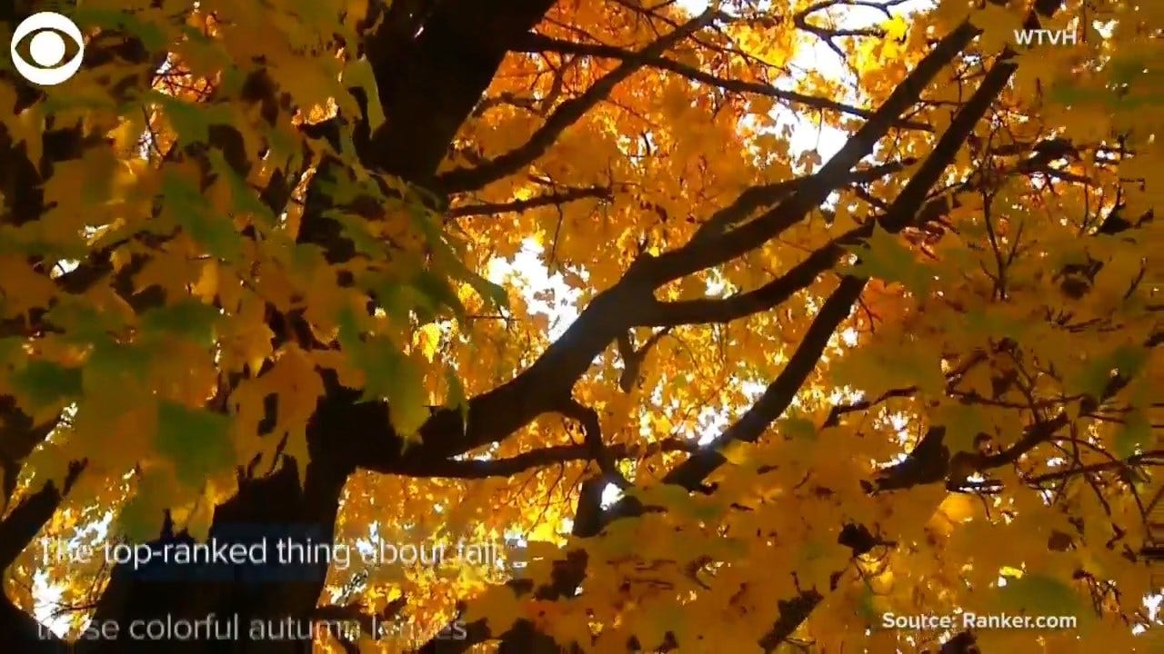 It's The First Weekend Of Fall; What's Your Favorite Thing About Fall?