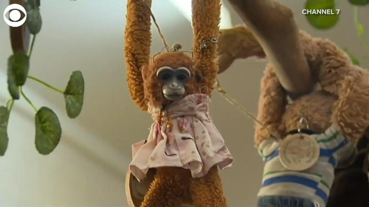 WATCH: Buckingham Palace Returns Lost Toy