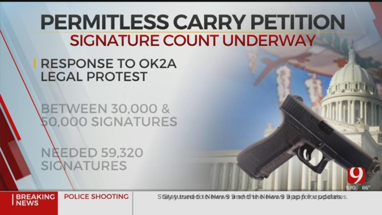 Gun Control Debate Intensifies As Permitless Petition Signatures Are Counted