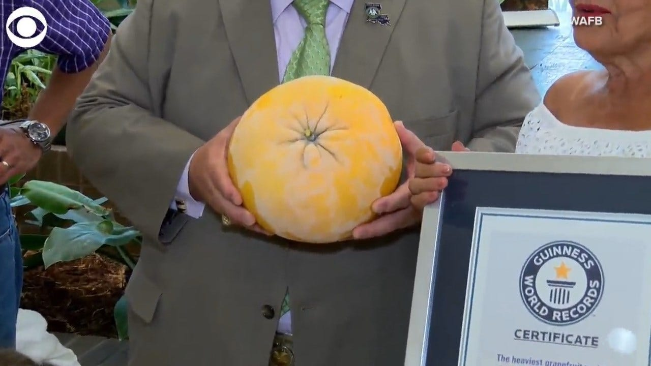 WOW! This Louisiana Couple Grew The Heaviest, Biggest Grapefruit On Record