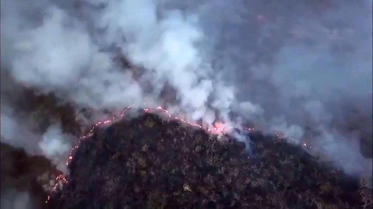 Wildfires Sweep Through Amazon Rainforest, Can Be Seen From Space