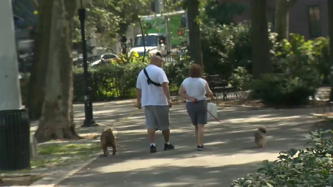 Research Shows Owning A Pet Is Good For Cardiovascular Health