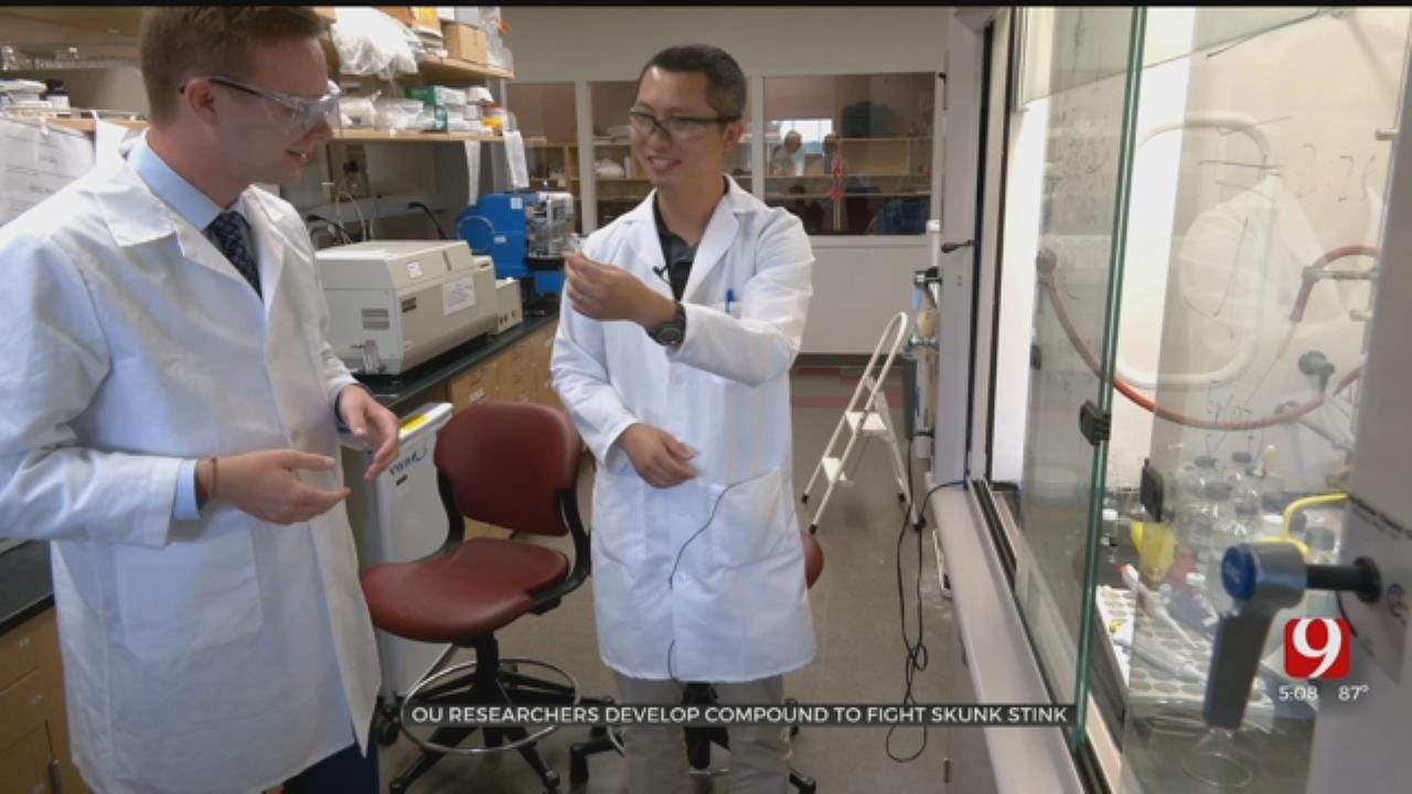 OU Researchers Develop Compound To Fight Skunk Odor