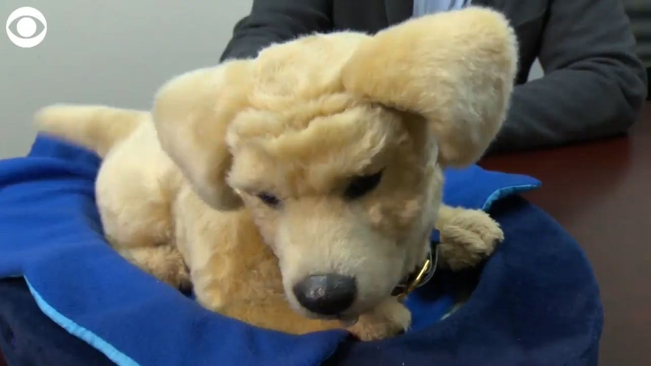MUST SEE: Robot Therapy Dogs