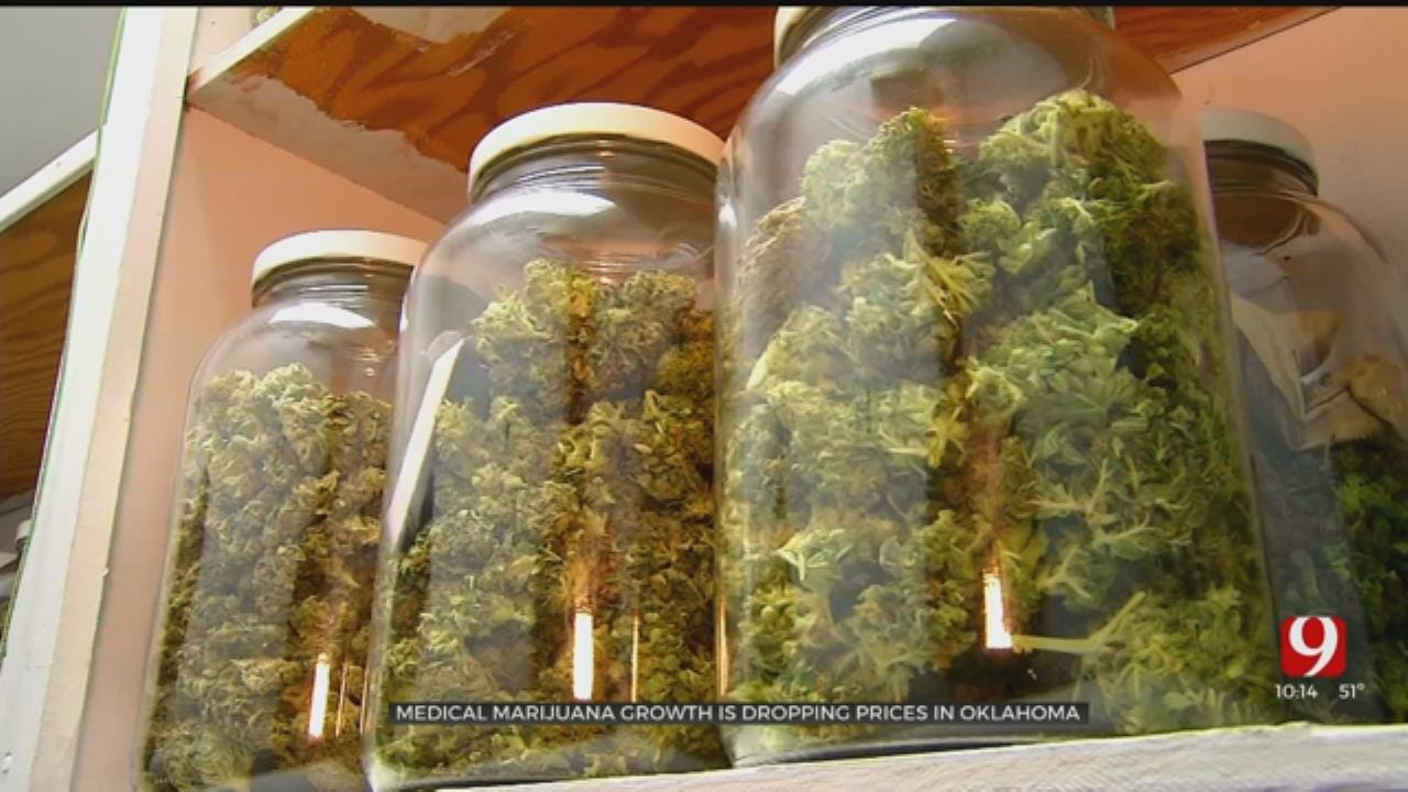 Oklahoma's Newest Cash Crop: Medical Marijuana Prices Falling