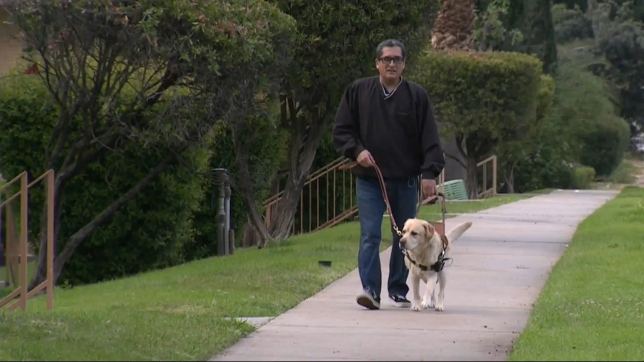 Lyft Driver Refuses Ride to Blind Man With Service Dog