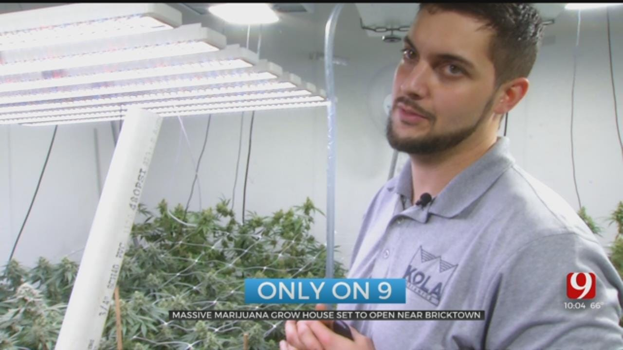 Former NFL Player, Oklahoma Native To Open Large Marijuana Grow In OKC