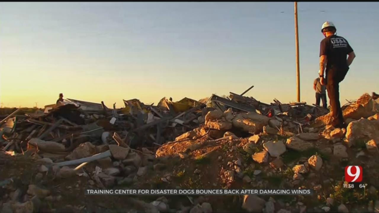 Training Center For Disaster Dogs Recovering After Damaging Winds