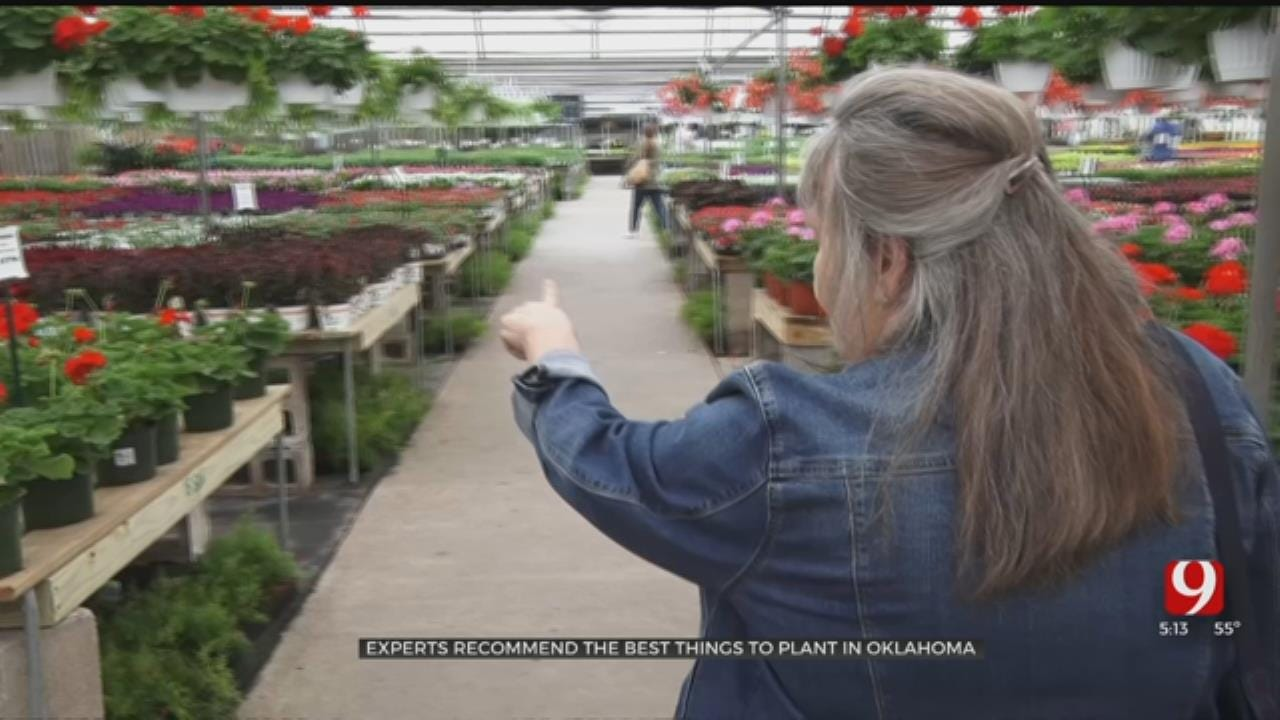 Experts Urge Research Before Planting In Oklahoma This Spring
